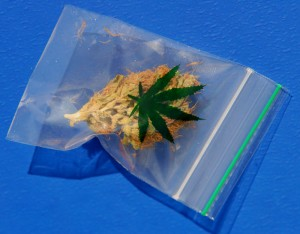 Zakje cannabis sativa (© Gonzo media)