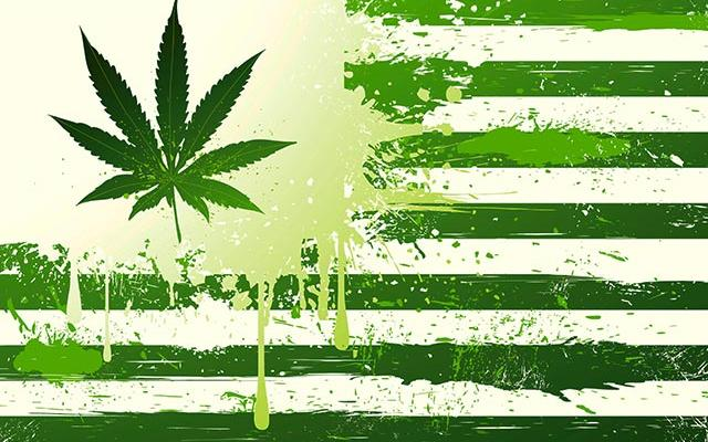 USA-cannabis-HT-2014