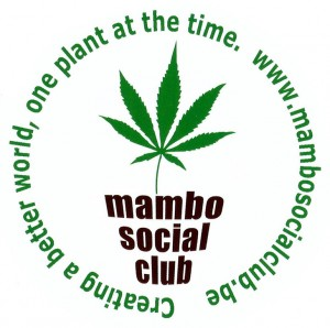 Mambo_Social_Club_sticker
